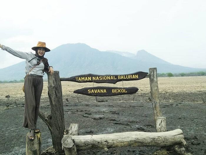 taman nasional baluran dan savana bekol